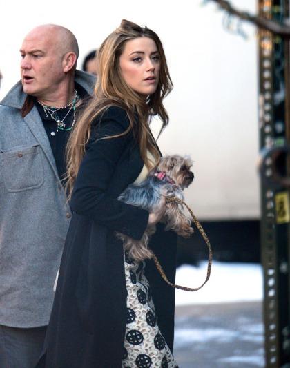 Johnny Depp & Amber Heard spent Valentine's Day apart: no big deal'
