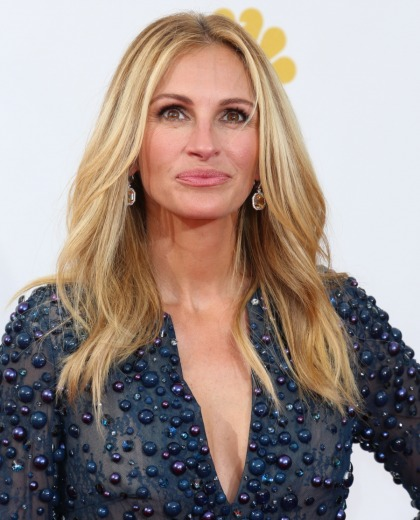 Julia Roberts: 'I?ve already taken a big risk in not having had a facelift'
