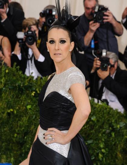 Celine Dion in Atelier Versace at the Met Gala: crazy or fun?