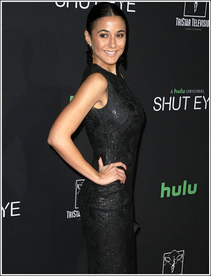 Emmanuelle Chriqui Puts On A Drool-Inducing Booty And Bosom Show