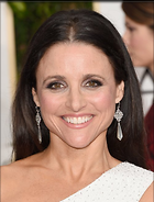 Celebrity Photo: Julia Louis Dreyfus 500x656   55 kb Viewed 34 times @BestEyeCandy.com Added 46 days ago