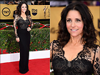 Celebrity Photo: Julia Louis Dreyfus 1024x768   176 kb Viewed 75 times @BestEyeCandy.com Added 29 days ago