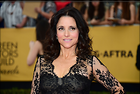 Celebrity Photo: Julia Louis Dreyfus 2048x1381   349 kb Viewed 77 times @BestEyeCandy.com Added 29 days ago