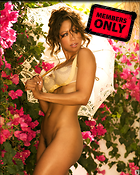 Celebrity Photo: Stacey Dash 1281x1600   952 kb Viewed 42 times @BestEyeCandy.com Added 582 days ago