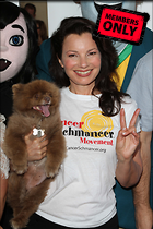Celebrity Photo: Fran Drescher 3456x5184   1.3 mb Viewed 1 time @BestEyeCandy.com Added 441 days ago