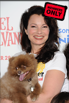 Celebrity Photo: Fran Drescher 2604x3844   1.5 mb Viewed 4 times @BestEyeCandy.com Added 526 days ago