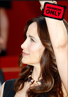 Celebrity Photo: Andie MacDowell 2120x3000   1.4 mb Viewed 7 times @BestEyeCandy.com Added 777 days ago