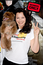 Celebrity Photo: Fran Drescher 2832x4256   2.4 mb Viewed 2 times @BestEyeCandy.com Added 441 days ago