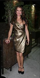 Celebrity Photo: Brooke Shields 315x600   74 kb Viewed 227 times @BestEyeCandy.com Added 1358 days ago