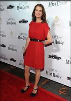 Celebrity Photo: Brooke Shields 424x600   80 kb Viewed 136 times @BestEyeCandy.com Added 1358 days ago