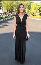 Celebrity Photo: Brooke Shields 386x600   89 kb Viewed 161 times @BestEyeCandy.com Added 1358 days ago