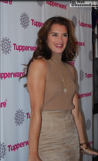 Celebrity Photo: Brooke Shields 500x825   224 kb Viewed 279 times @BestEyeCandy.com Added 1182 days ago