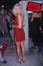 Celebrity Photo: Erika Eleniak 1475x2246   1,010 kb Viewed 70 times @BestEyeCandy.com Added 2609 days ago