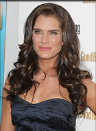 Celebrity Photo: Brooke Shields 441x600   93 kb Viewed 156 times @BestEyeCandy.com Added 1182 days ago
