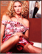 Celebrity Photo: Bridgette Wilson 783x1005   241 kb Viewed 768 times @BestEyeCandy.com Added 2327 days ago