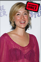 Celebrity Photo: Allison Mack 2009x3000   1,048 kb Viewed 17 times @BestEyeCandy.com Added 1114 days ago
