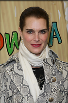 Celebrity Photo: Brooke Shields 2001x3000   888 kb Viewed 148 times @BestEyeCandy.com Added 1521 days ago