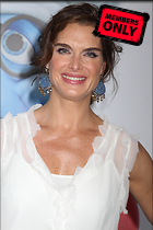 Celebrity Photo: Brooke Shields 3456x5184   1.1 mb Viewed 21 times @BestEyeCandy.com Added 1298 days ago