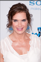 Celebrity Photo: Brooke Shields 1993x3000   790 kb Viewed 354 times @BestEyeCandy.com Added 1324 days ago