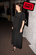 Celebrity Photo: Jeanne Tripplehorn 2011x3000   1,030 kb Viewed 7 times @BestEyeCandy.com Added 1828 days ago