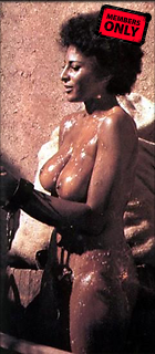Celebrity Photo: Pam Grier 241x550   24 kb Viewed 28 times @BestEyeCandy.com Added 2659 days ago