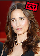 Celebrity Photo: Andie MacDowell 2128x3000   1.5 mb Viewed 13 times @BestEyeCandy.com Added 763 days ago