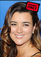 Celebrity Photo: Cote De Pablo 2400x3304   1.2 mb Viewed 16 times @BestEyeCandy.com Added 279 days ago