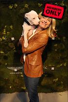 Celebrity Photo: Elisabeth Shue 2011x3000   1.1 mb Viewed 5 times @BestEyeCandy.com Added 843 days ago
