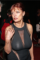 Celebrity Photo: Susan Sarandon 683x1024   231 kb Viewed 5.790 times @BestEyeCandy.com Added 590 days ago