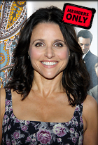 Celebrity Photo: Julia Louis Dreyfus 2448x3600   1.9 mb Viewed 7 times @BestEyeCandy.com Added 77 days ago