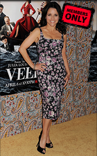 Celebrity Photo: Julia Louis Dreyfus 2400x3861   2.6 mb Viewed 5 times @BestEyeCandy.com Added 87 days ago