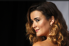 Celebrity Photo: Cote De Pablo 3233x2178   769 kb Viewed 60 times @BestEyeCandy.com Added 90 days ago