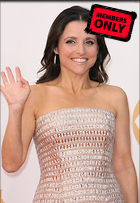 Celebrity Photo: Julia Louis Dreyfus 2336x3384   1,075 kb Viewed 0 times @BestEyeCandy.com Added 33 days ago