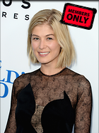 Celebrity Photo: Rosamund Pike 2247x3000   1,112 kb Viewed 5 times @BestEyeCandy.com Added 162 days ago