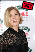 Celebrity Photo: Rosamund Pike 2500x3757   1.2 mb Viewed 4 times @BestEyeCandy.com Added 83 days ago