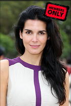 Celebrity Photo: Angie Harmon 2921x4330   1.1 mb Viewed 4 times @BestEyeCandy.com Added 43 days ago