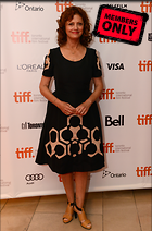 Celebrity Photo: Susan Sarandon 4248x6432   4.5 mb Viewed 7 times @BestEyeCandy.com Added 503 days ago