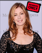 Celebrity Photo: Dana Delany 2429x3000   1.7 mb Viewed 13 times @BestEyeCandy.com Added 271 days ago