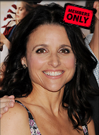 Celebrity Photo: Julia Louis Dreyfus 2400x3274   1.2 mb Viewed 5 times @BestEyeCandy.com Added 87 days ago