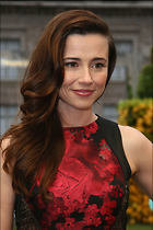 Celebrity Photo: Linda Cardellini 1997x3000   691 kb Viewed 103 times @BestEyeCandy.com Added 415 days ago