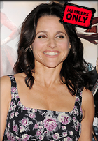 Celebrity Photo: Julia Louis Dreyfus 2400x3465   1.7 mb Viewed 4 times @BestEyeCandy.com Added 87 days ago