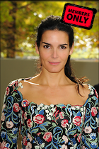 Celebrity Photo: Angie Harmon 2832x4256   1.6 mb Viewed 4 times @BestEyeCandy.com Added 52 days ago