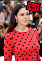 Celebrity Photo: Monica Bellucci 2379x3444   1.7 mb Viewed 3 times @BestEyeCandy.com Added 41 days ago