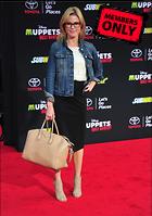 Celebrity Photo: Julie Bowen 2700x3838   2.0 mb Viewed 2 times @BestEyeCandy.com Added 235 days ago