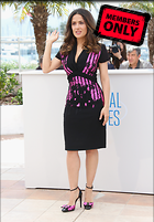 Celebrity Photo: Salma Hayek 3313x4757   2.1 mb Viewed 4 times @BestEyeCandy.com Added 31 days ago