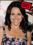 Celebrity Photo: Julia Louis Dreyfus 2400x3227   1.5 mb Viewed 3 times @BestEyeCandy.com Added 77 days ago