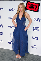 Celebrity Photo: Piper Perabo 2120x3184   2.5 mb Viewed 1 time @BestEyeCandy.com Added 41 days ago