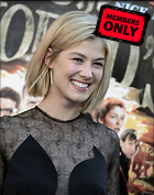 Celebrity Photo: Rosamund Pike 2375x3000   1,101 kb Viewed 3 times @BestEyeCandy.com Added 162 days ago