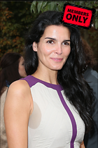 Celebrity Photo: Angie Harmon 2400x3600   1.2 mb Viewed 6 times @BestEyeCandy.com Added 123 days ago