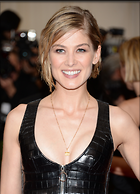 Celebrity Photo: Rosamund Pike 2167x3000   769 kb Viewed 61 times @BestEyeCandy.com Added 43 days ago